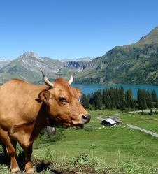 Lacs et gourmandises des montagnes