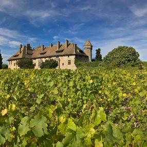 Domaine de Ripaille - Vin de Ripaille