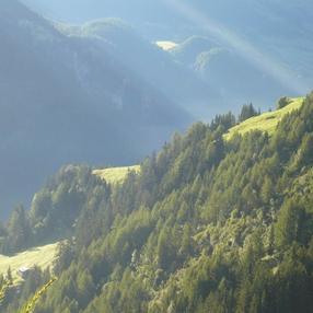 Réserve naturelle des Hauts de Villaroger