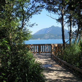 Réserve Naturelle du Bout du Lac d'Annecy