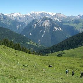 Sentier du Mont Jovet