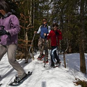 Col du Feu - Foyer des Moises Snowshoe Trek