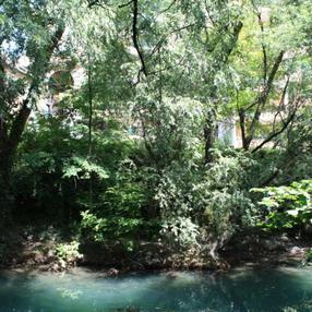 Thiou à Annecy et Cran-Gevrier