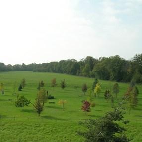 Arboretum de Ripaille