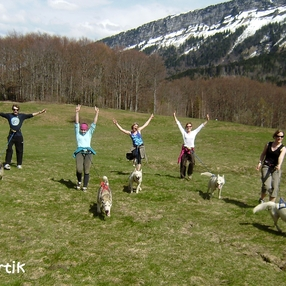 Cani randonnée