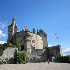 Château de Menthon-Saint-Bernard image