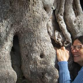 Deux jours à méditer !  Reconnaissance des plantes et communication avec les arbres