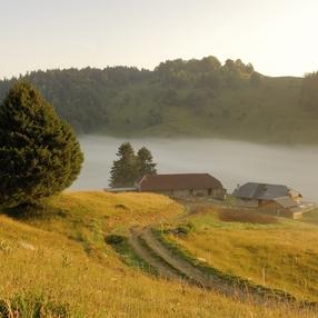 Parc Naturel Régional des Bauges image