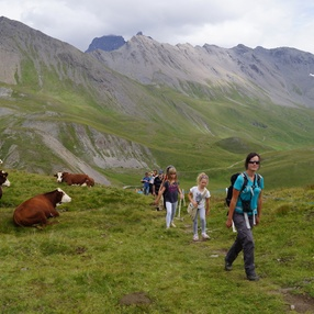 Escapade gourmande à l'alpage du Vallon