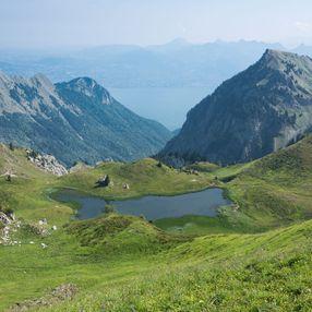 Office de Tourisme Pays d'Evian Vallée d'Abondance