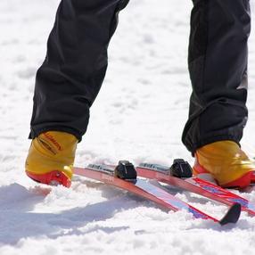 Cours de ski de fond et de Biathlon