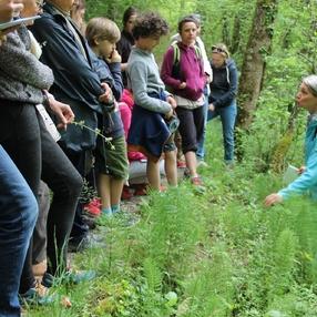 Balade autour des Plantes Santé - Secrets de Plantes