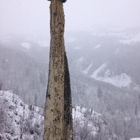 Cheminée de Fée géante : le Moine de Champlan