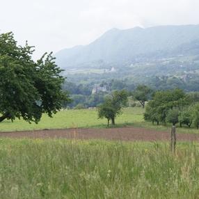 Le Marais de Pré Lombard