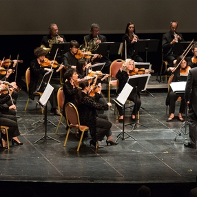 Concert  : Orchestre des Pays de Savoie