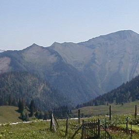 Les plantes sauvages de la Réserve nationale des Hautes-Bauges