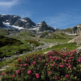 Ambiance montagnarde au Vallon de Bérard