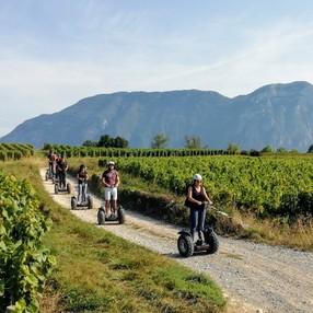 Balade en Segway dans les vignobles