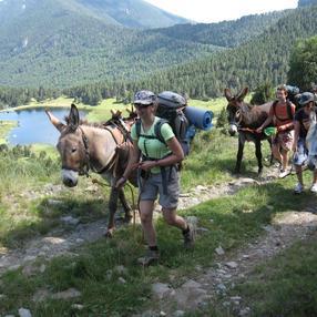 Sortie Bivouac avec les ânes