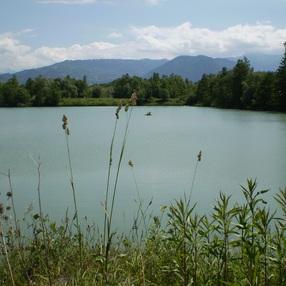 Site naturel des Iles de Vougy