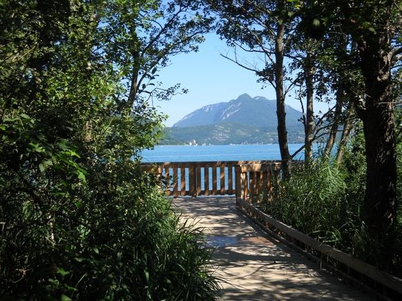 Doussard Réserve naturelle Bout du lac