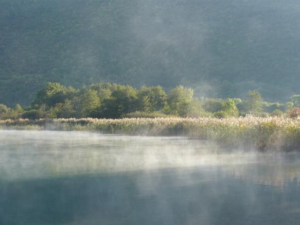 Réserve naturelle du Bout du lac Annecy