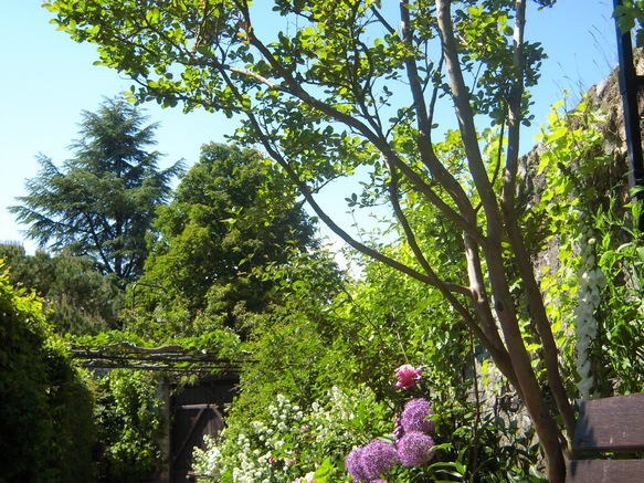 Jardin des cinq sens in yvoire french alps savoie mont for Jardin 5 sens guadeloupe