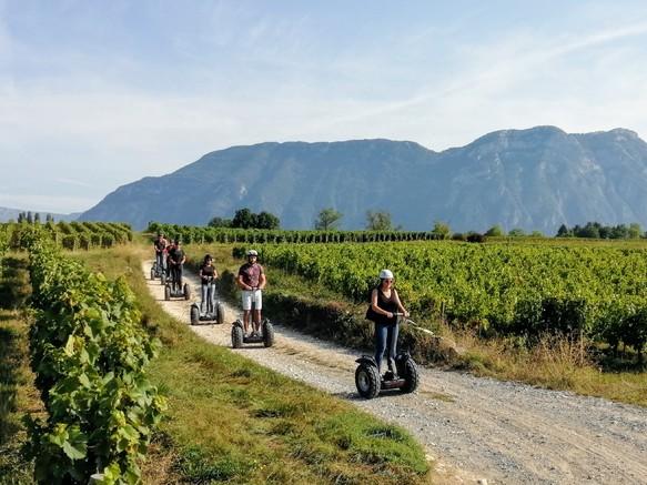 Balades en Segway dans les vignobles