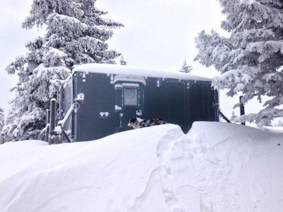 Là Haut Shelter d'altitude à louer