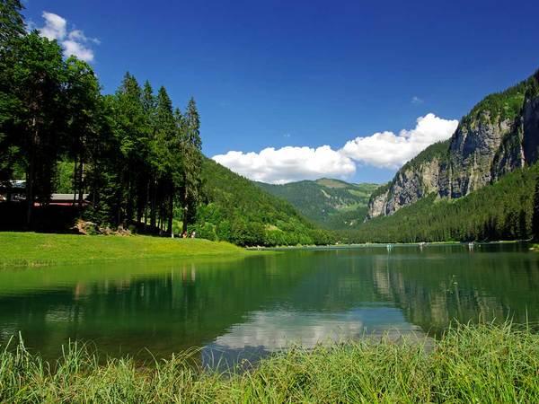 Lac de Montriond image