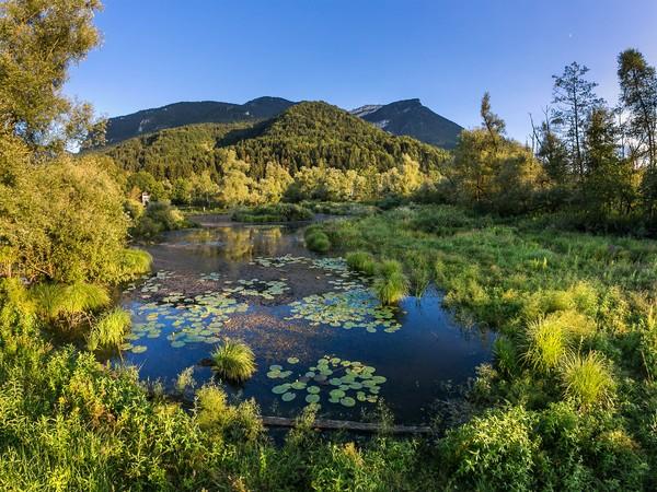Espace Naturel Sensible des Tourbières de l'Herretang image