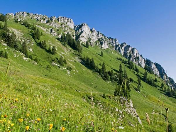 Tour du Mont Ouzon image