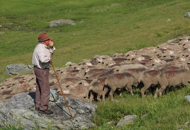 Fête du mouton