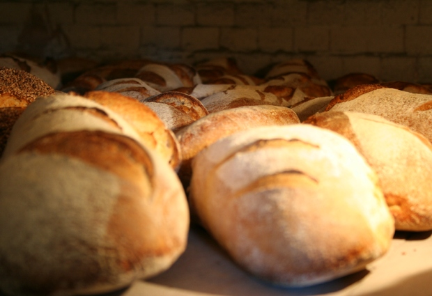 Atelier Fabrication de pain et pizza au feu de bois