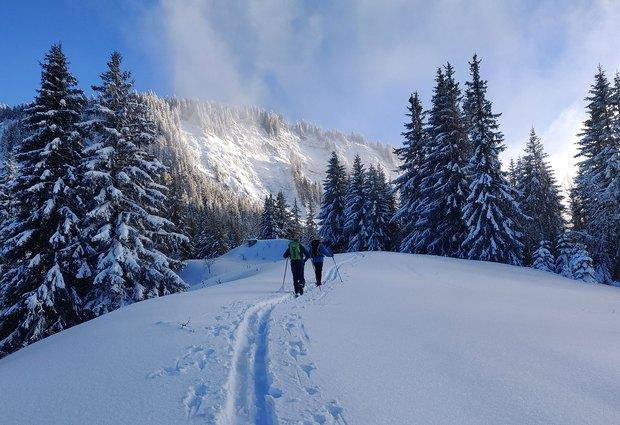 Le Snooc au Col du Corbier