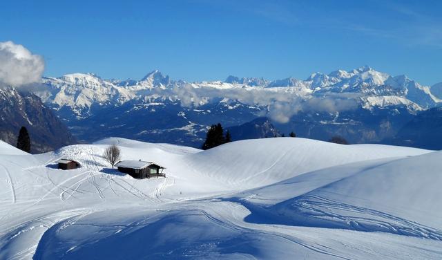 Piste du ski du plateau de Plaine Joux