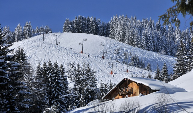 Essert-chalet-domaine-skiable