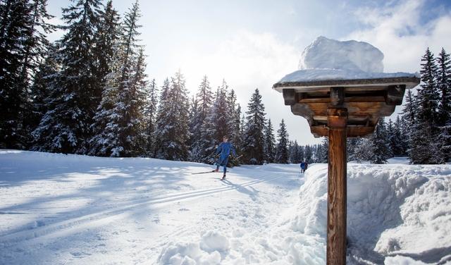 Ski de fond aux Saisies