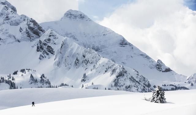 Plateau de Cenise en hiver