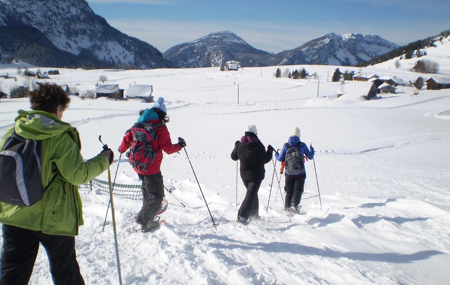 Marcheurs raquette Plateau de Solaison
