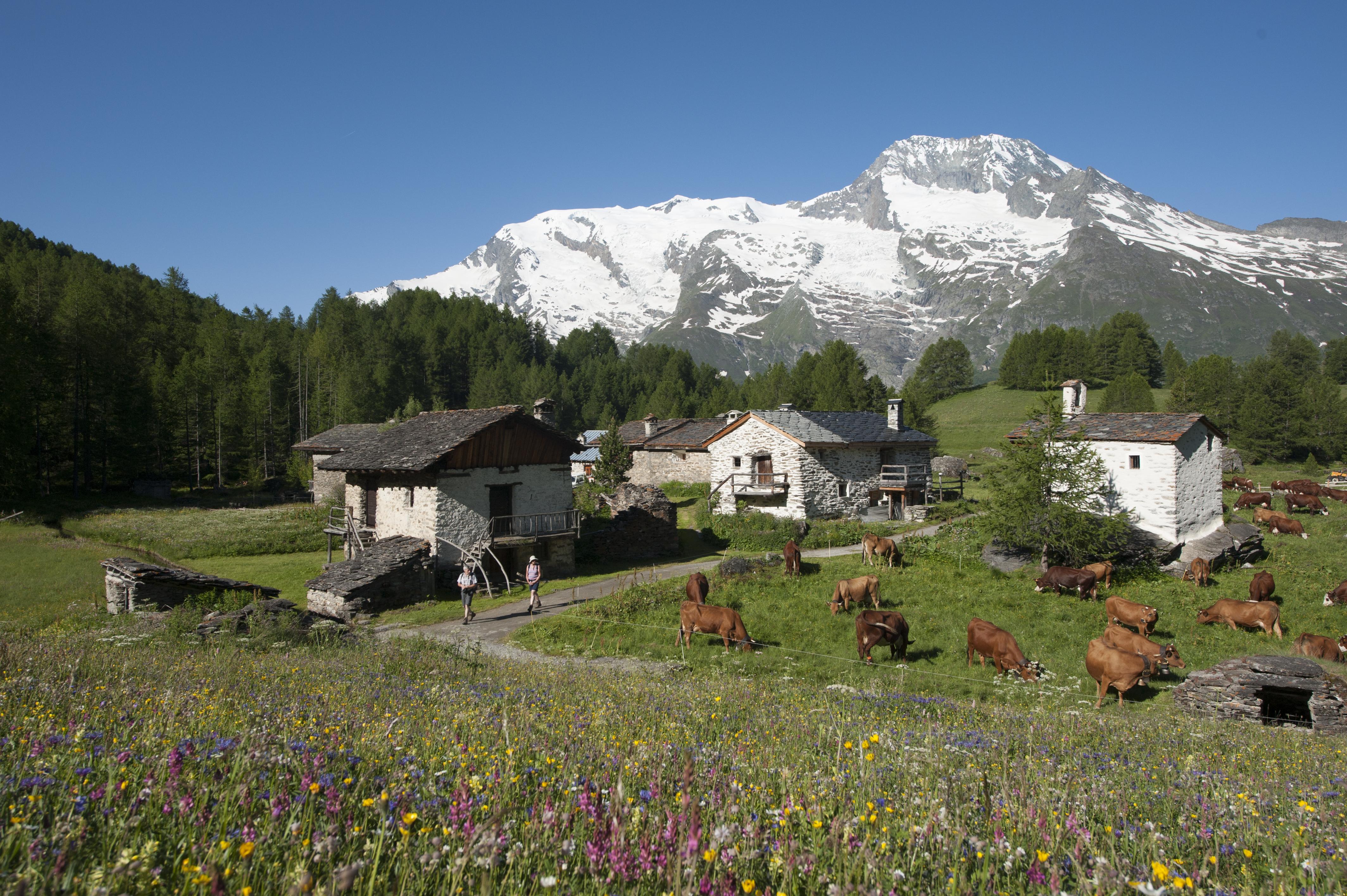 Village du monal savoie mont blanc savoie et haute - Office du tourisme les contamines montjoie 74 ...
