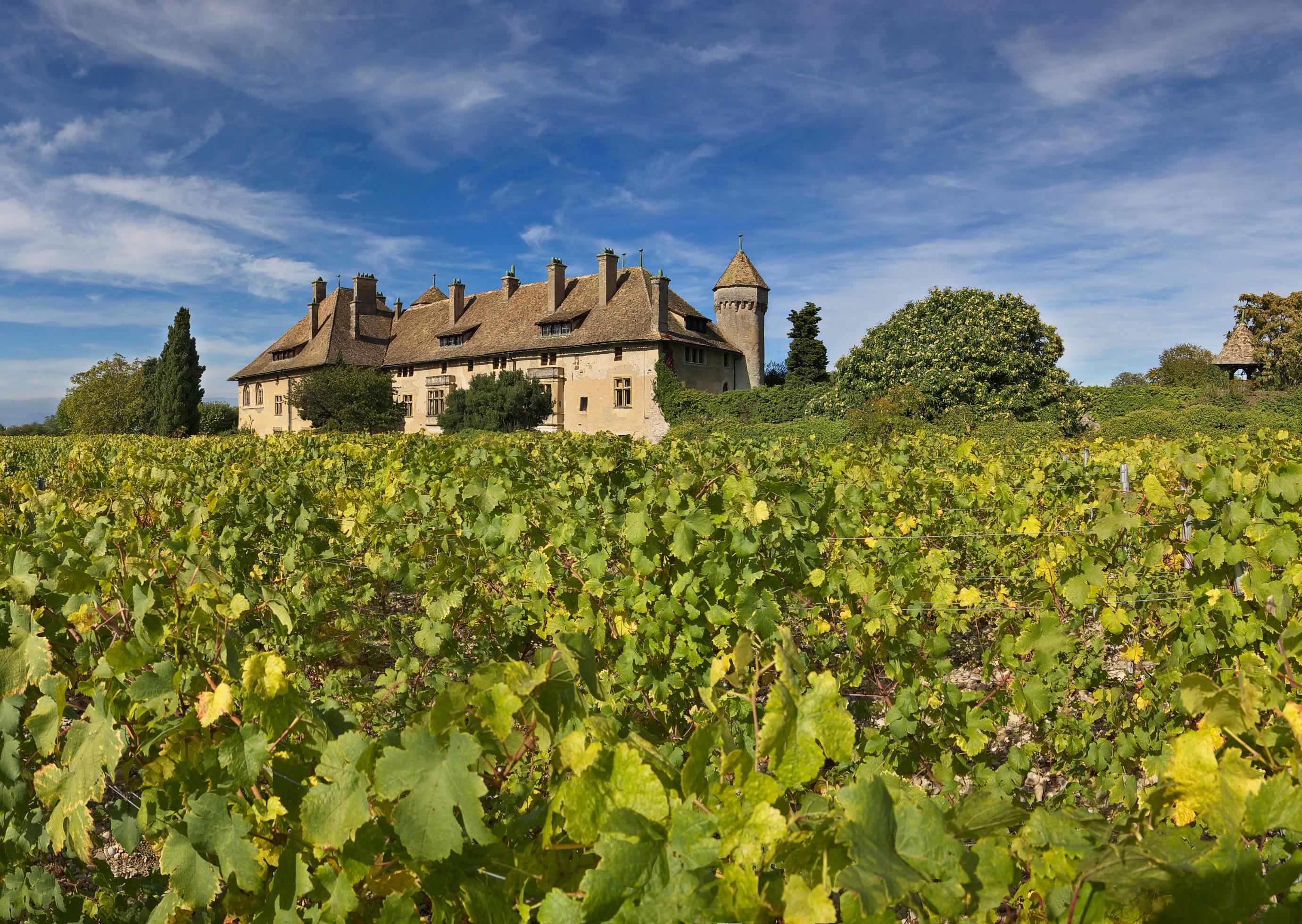 Domaine de ripaille vin de ripaille savoie mont blanc - Office de tourisme de thonon les bains ...