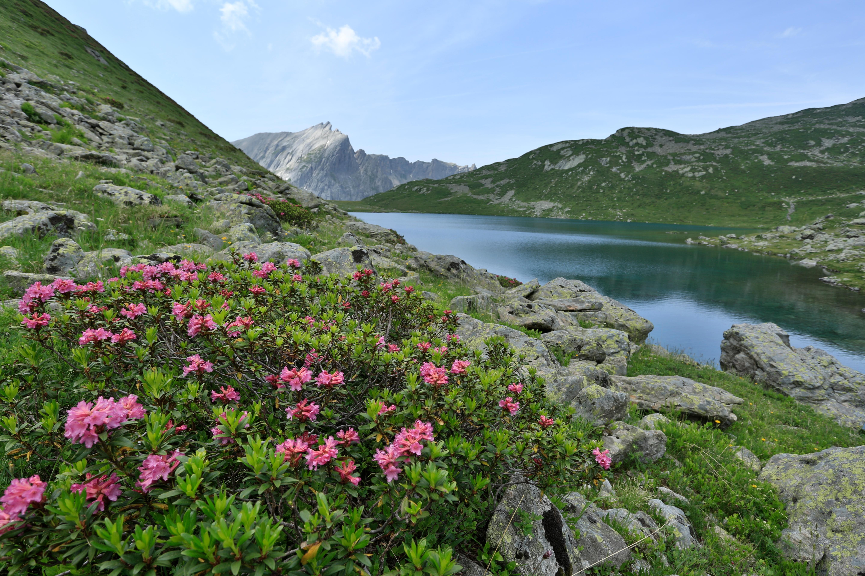 R serve naturelle nationale des contamines montjoie savoie mont blanc savoie et haute savoie - Office tourisme les contamines montjoie ...