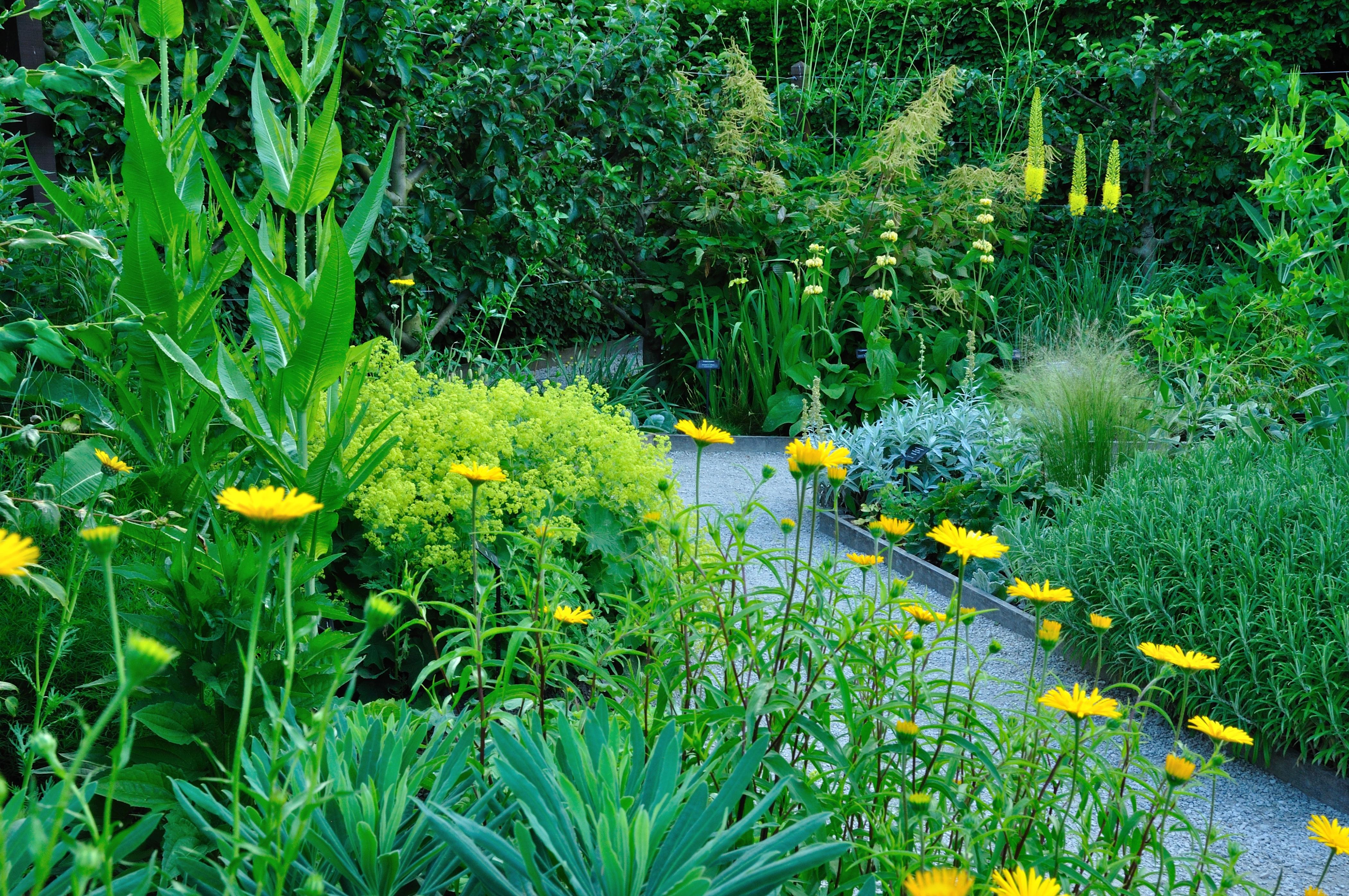 Jardin des cinq sens savoie mont blanc savoie et haute for Entretien jardin haute savoie