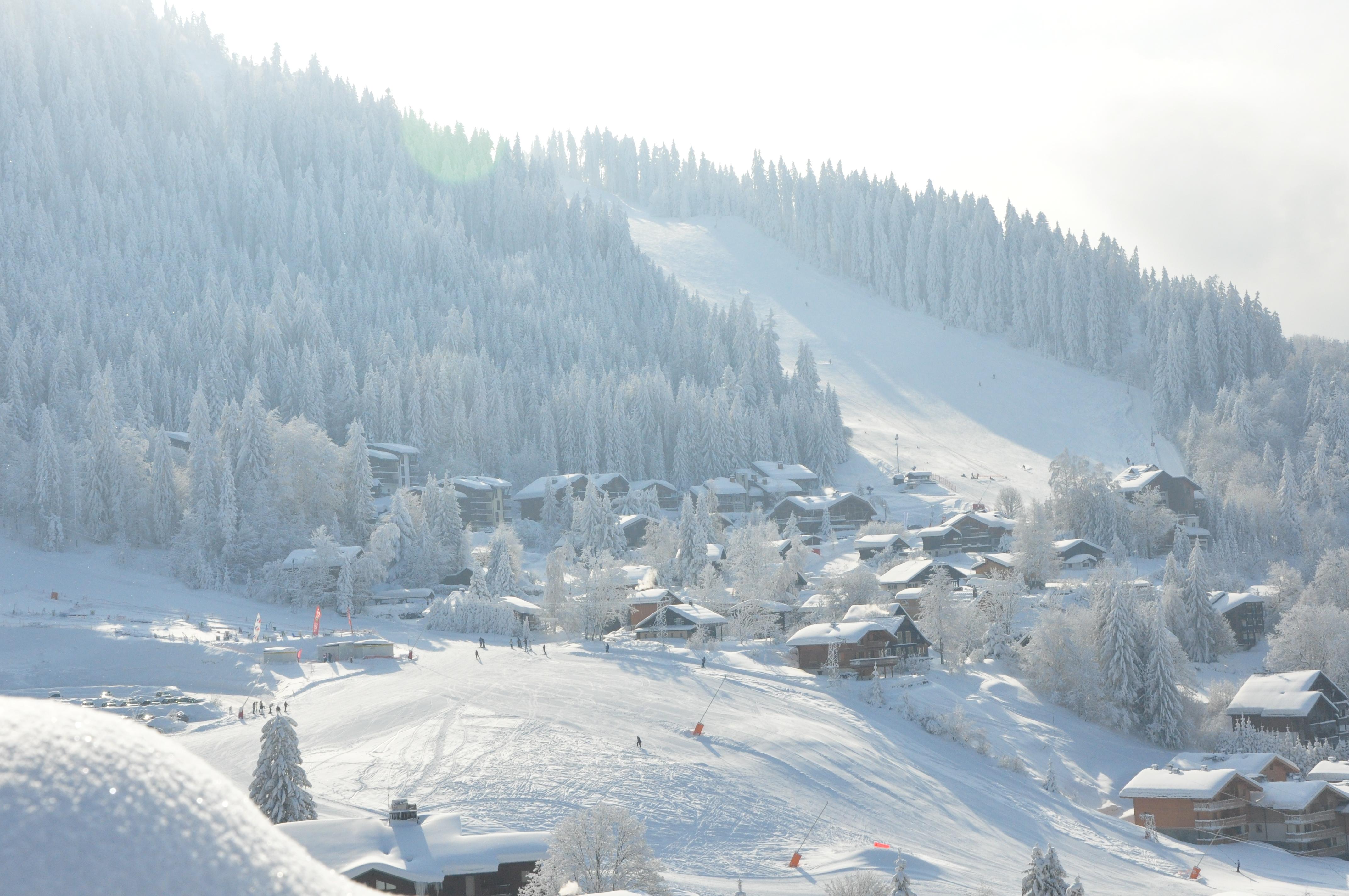 Les Carroz - French Alps - Savoie Mont Blanc