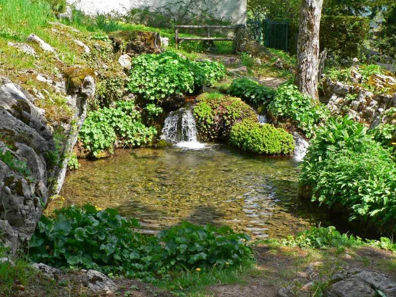 Jardin botanique alpin savoie mont blanc savoie et for Entretien jardin haute savoie