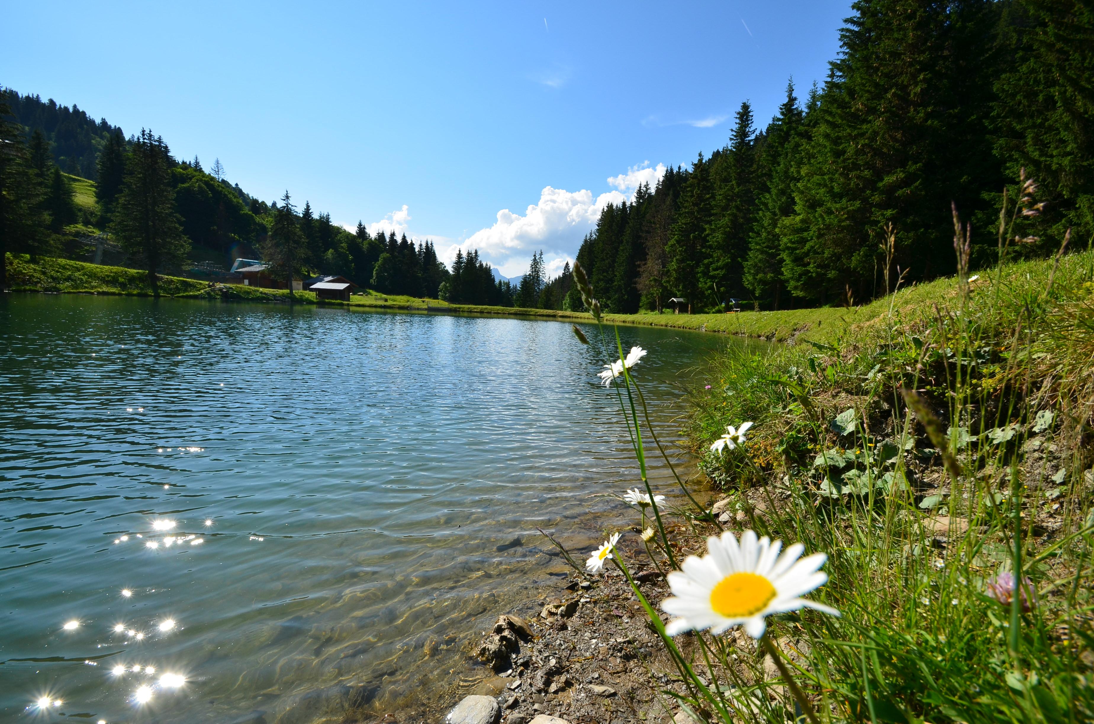 Lac du plan dessert savoie mont blanc savoie et haute - Office tourisme notre dame de bellecombe ...